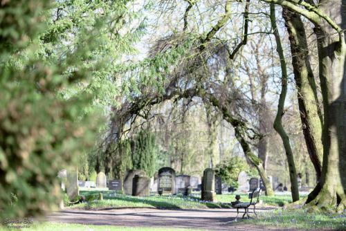 Begraafplaats Zutphen
